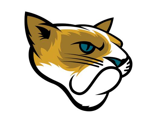 Jacksonville_Jaguars_Grumpy_Cat_1